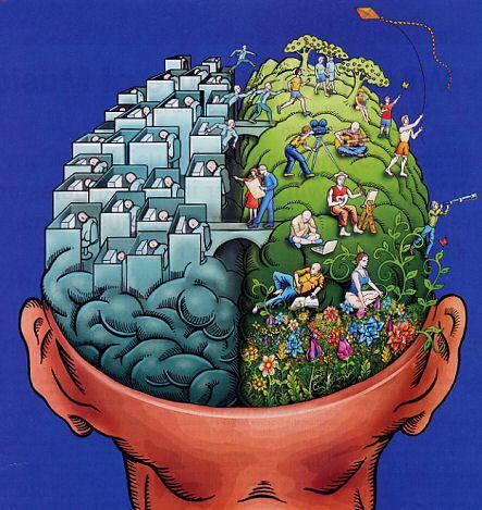 linker-rechter-hersenhelft
